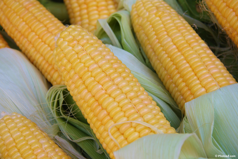 Summer Vegetables: Corn | Let's Get Homey, Homies!